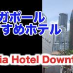 シンガポール のおすすめホテル紹介します~Oasia Hotel Downtown編~