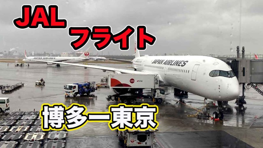 【JALフライト】福岡-東京