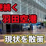 減便が続く、羽田空港のいま(2020年6月上旬撮影)