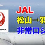 【JAL国内線】松山から羽田に帰りながら富士山も見えたフライト