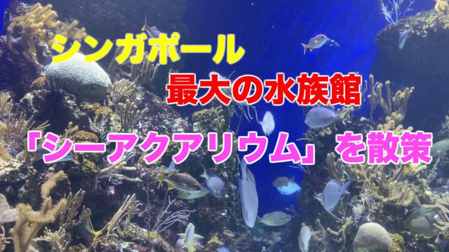 シンガポールの巨大水族館「シー・アクアリウム」を散策