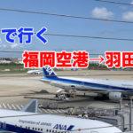 ANAボーイング777-300で行く、福岡空港から羽田空港