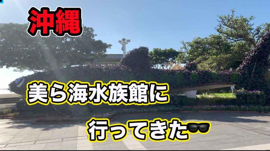 【沖縄 観光】美ら海水族館を歩いてみた